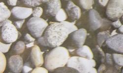 PLASTICA ADESIVA ROTOLO 20 MTL - FANTASIA 28301