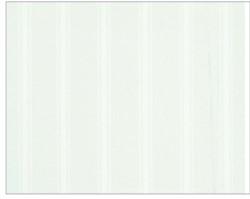 TENDA PVC FANTASIA 8000 MISURE 240 X 200 BIANCA
