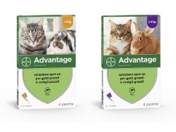 ADVANTAGE PER GATTI INFERIORI A 4KG - BAYER