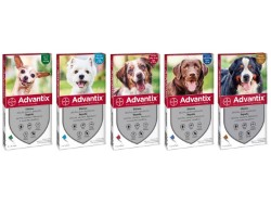 BAYER ADVANTIX X CANI  4-10 KG.