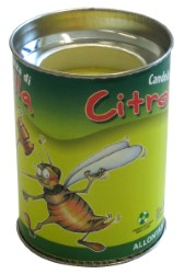 CITRONELLA IN CANDELA MADE IN ITALY  h cm. 8